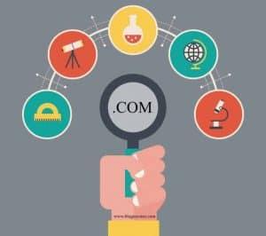search-domain-names
